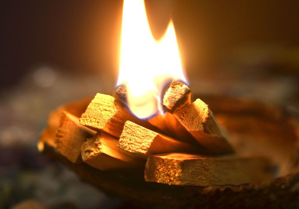 Cleanse your home with Palo Santo