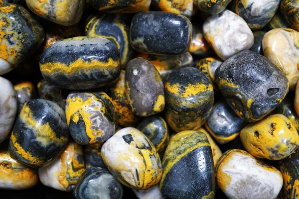 A Transformation Ritual with Bumble Bee Jasper